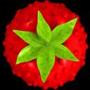 Smultron icon